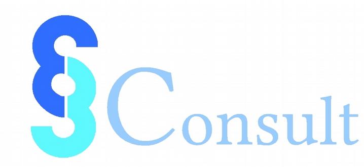 e3 Consult
